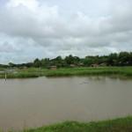 この集落も不法滞在者の集まりみたい。湿地帯に複数の集落が点在しています。