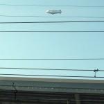 途中で超久しぶりに気球を見ました。