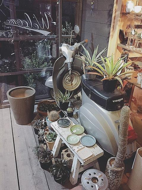 くくあ,植物店,おしゃれ,タイセイホーム,インテリア,グリーン,ワークショップ