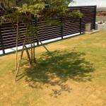 広い敷地を活かした、芝生が気持ちいいお庭になりました(^_-)-☆