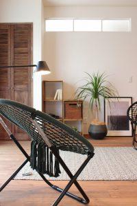 どんなお部屋にも合うくくあさんの植物。オシャレなもの一つで空間が絵になります。