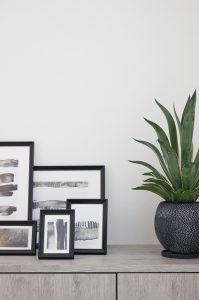 くくあ植物店さんには、シンプルスタイリッシュなお家にも合うオシャレな植物が多数。
