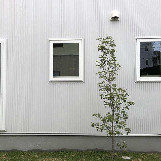 高知市福井町にあるオーダーメイドハウス専門店。自然素材を使用し人にも環境にも良いお家づくりをしています。